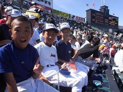 baseball-com-343129