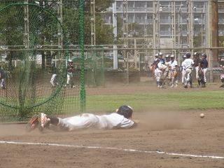 baseball-com-179148