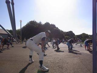 baseball-com-179124