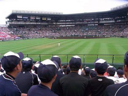 baseball-com-261084