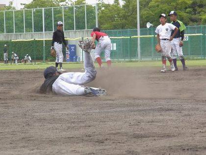baseball-com-344019