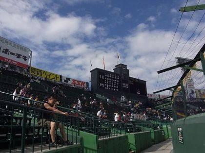 baseball-com-343119
