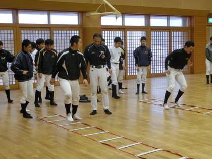 baseball-com-454249