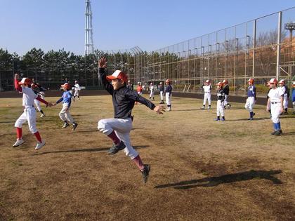 baseball-com-134310