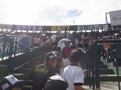 baseball-com-343117