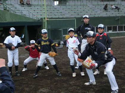 baseball-com-453988
