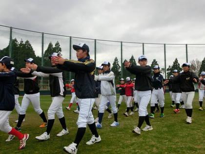 baseball-com-453967
