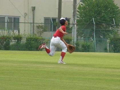 baseball-com-344005