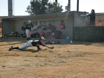 baseball-com-454920