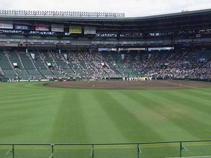baseball-com-343120