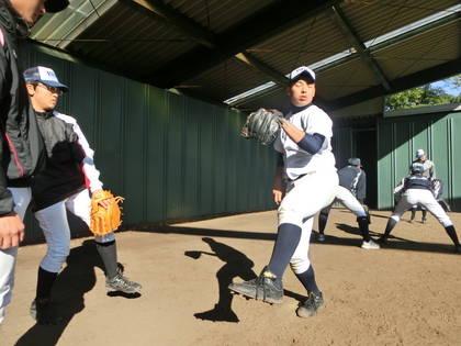 baseball-com-454475