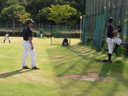 baseball-com-343155