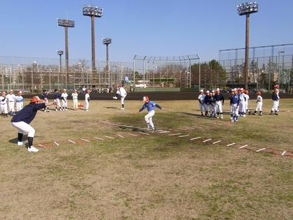 baseball-com-134312
