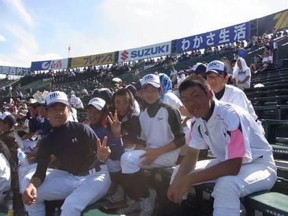 baseball-com-343126
