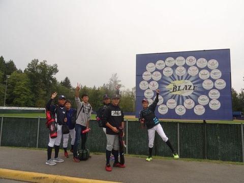 large_Baseball_bays_201709_015