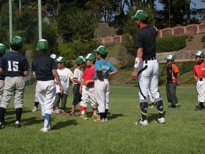 baseball-com14-433094
