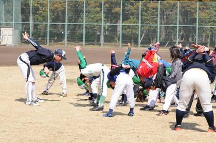 baseball-com14-469058