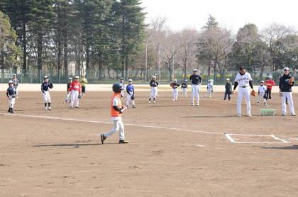 baseball-com14-469082