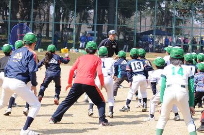baseball-com14-469059