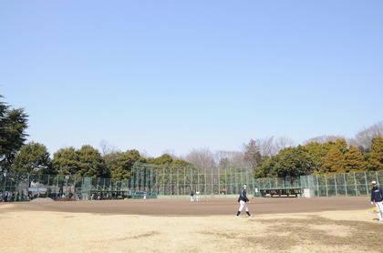 baseball-com14-469053