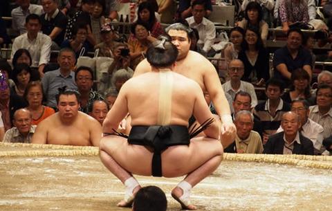 sumo08