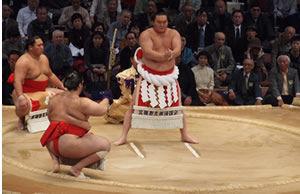 sumo-00