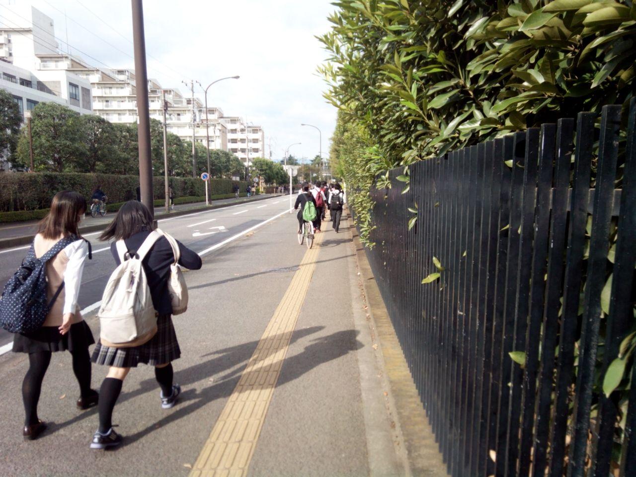 高校 神奈川 総合