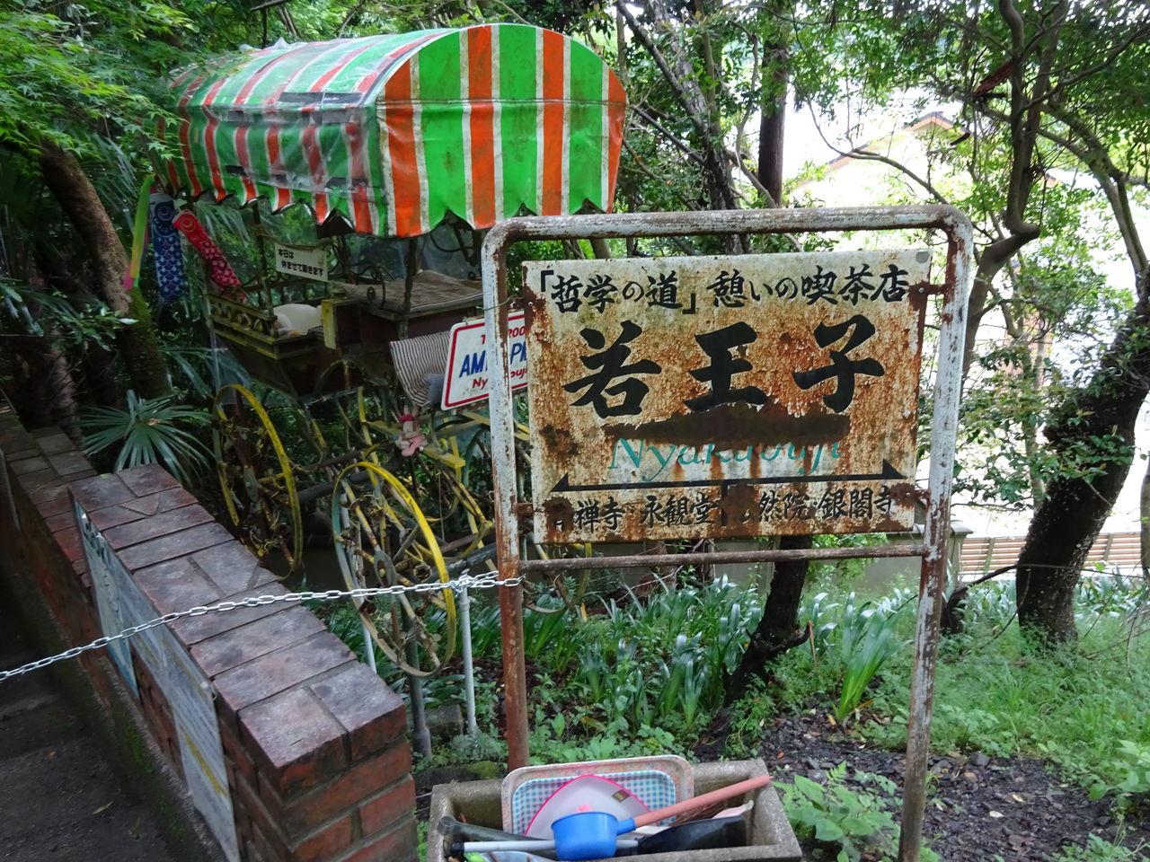 栗塚旭の画像 p1_27