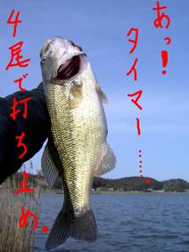 yamagata_003