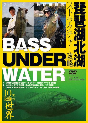 DVD-bassunderwater
