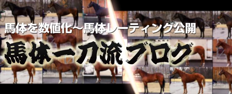 馬体一刀流ブログ~馬体レーティング/パドックより馬体写真で適性を見極める馬体診断/馬体の見方を公開
