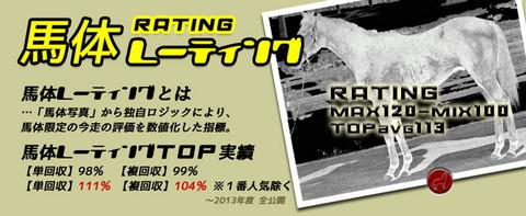 馬体レーティング