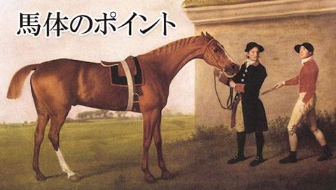 馬体の見方ポイント