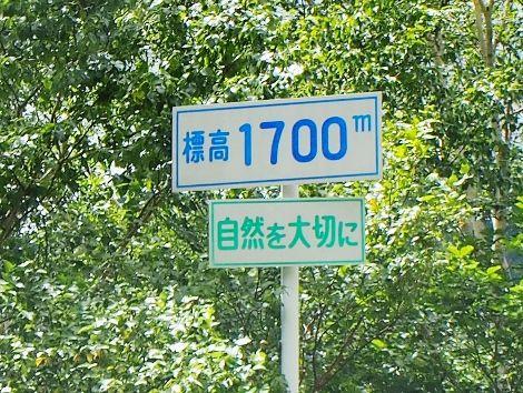 1 (40) (470x354)