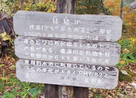 8 (6) (470x341)