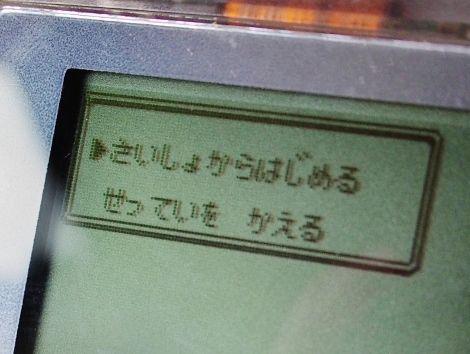P7270406 (470x354)
