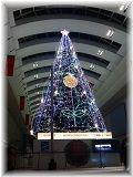 $☆横浜ベイコール☆-クリスマスツリー