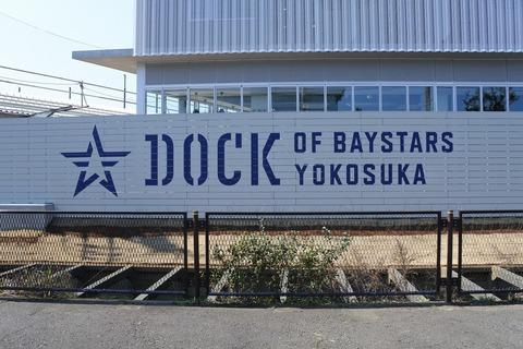 dock_logo_01
