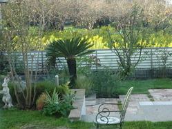garden171018 (1)