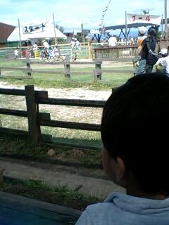 ミルク牧場 レース