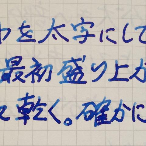 IMG_5057