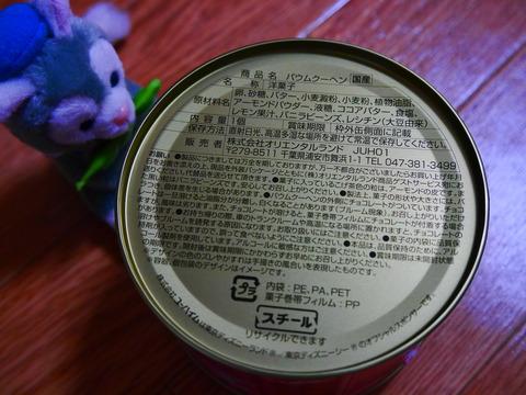 P1110420