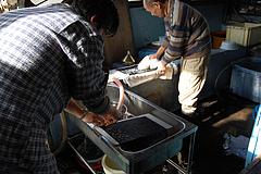 NIKON D40_2009年11月15日 11時18分_DSC_0148_722x480
