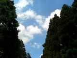 20050723エコワーク(青空)
