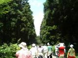20050723エコワーク(帰り道)
