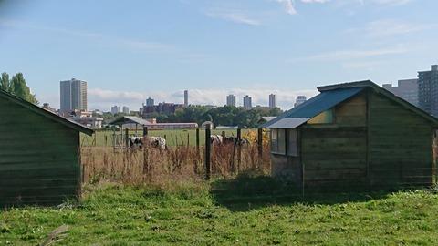 名古屋さん、栄区から1キロで牧場があった