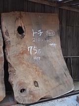 RIMG1378
