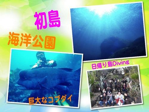 IOP&初島