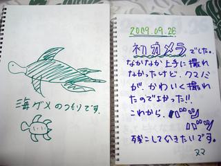 26井田3