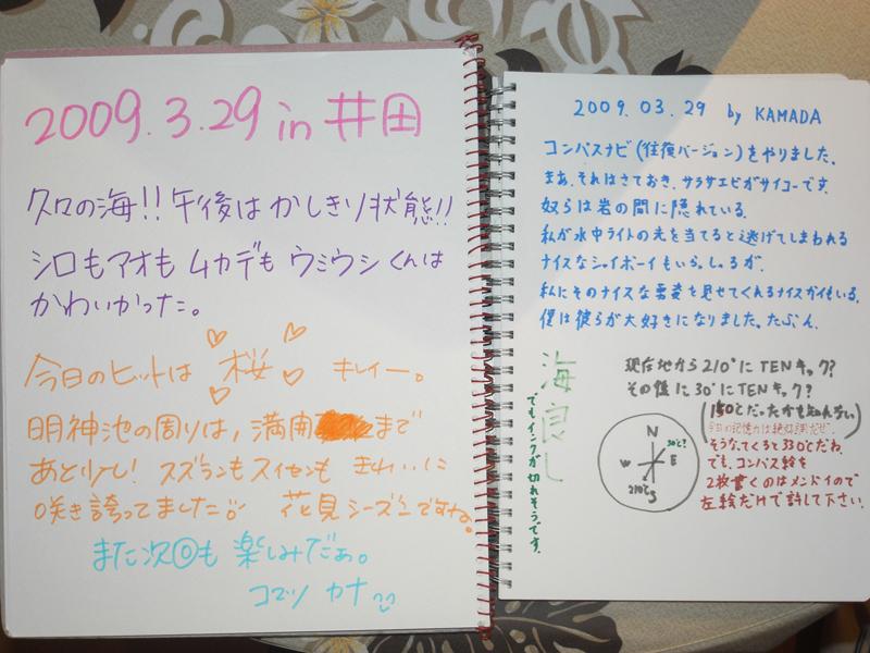井田ブログ 3.29